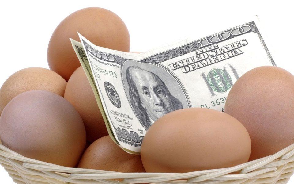 money in eggs in basket