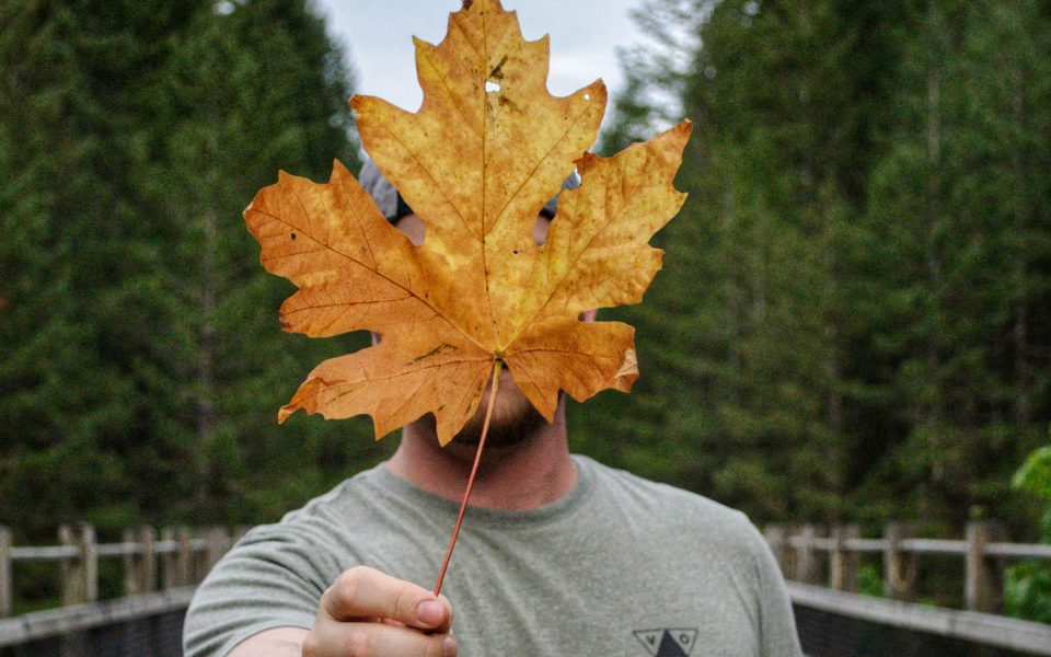 canadian maple leaf covering mans face