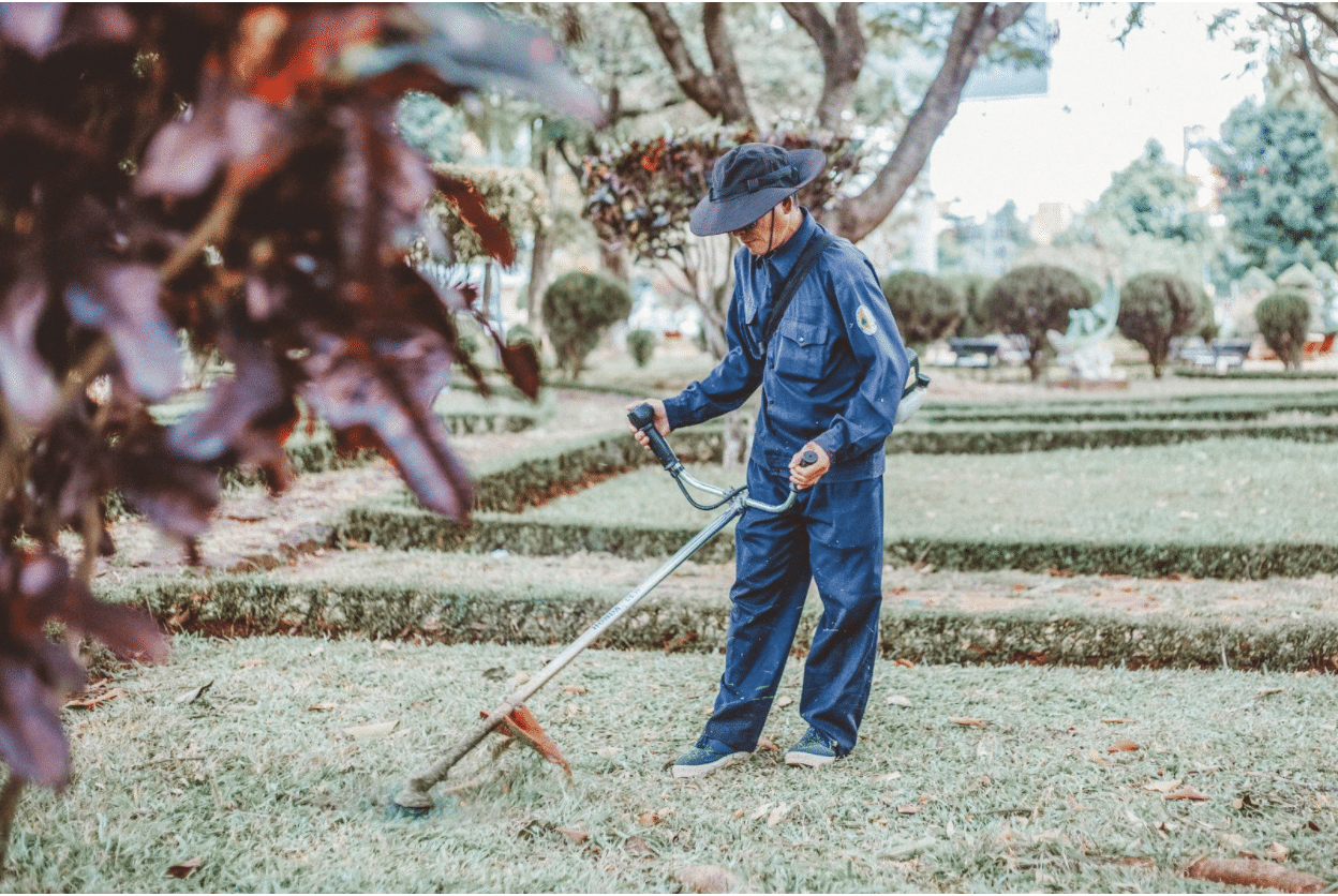 Google My Business for landscapers